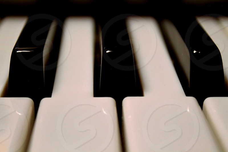 FAB - F sharp A B flat notes  close-up of keys on a piano. photo