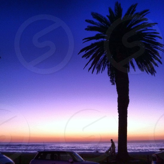 Beach South Africa.  photo