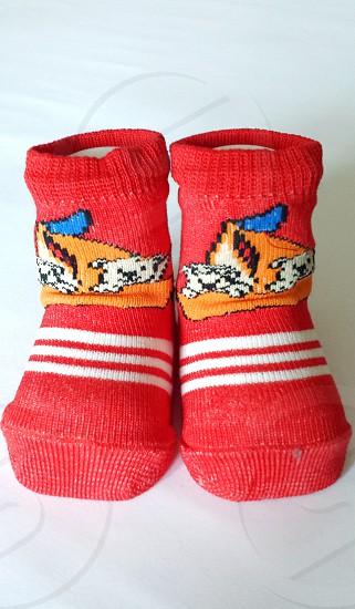 children's red and white bear printed socks photo