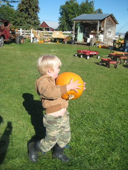 Pumpkin patch boy Fall Halloween farm photo