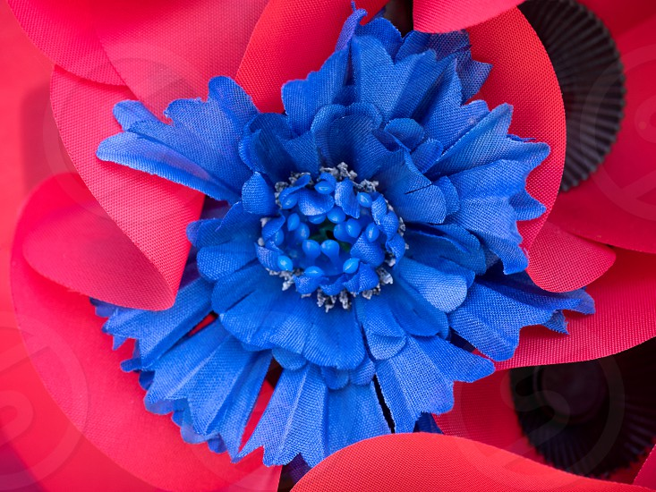 Special Poppy to Commemorate the Centenary of the Battle of the Somme photo