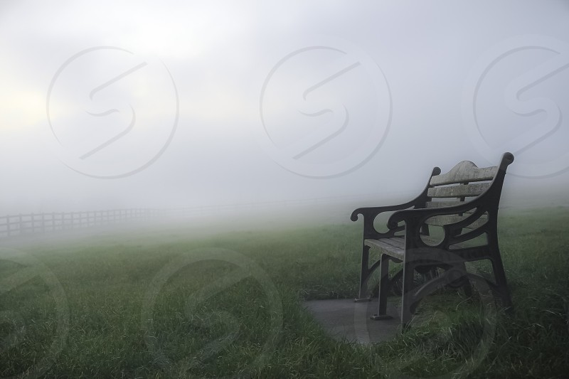 brown wooden bench on green lawn with fog photography photo