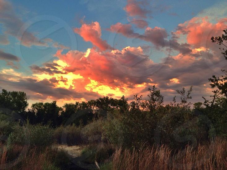 Nice fiery sunset photo