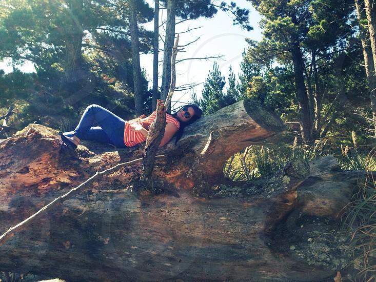 woman lying on tree bark photo