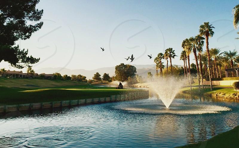 fountain near green field and flying birds under blue sky photo