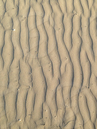 grey sand dunes photo