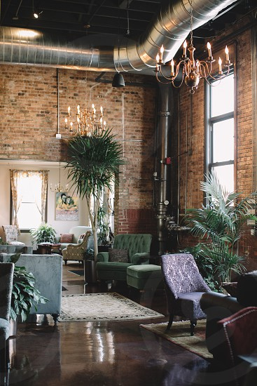 green tufted padded sofa chair beside beige trunk green leaf potted tree and ottoman in beige area rug under brass pendant lamps inside brick room during daytime photo