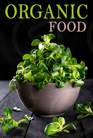 Organic food fresh valerian salad on dark wooden table top view. Healphy and cleaning nutrition concept with text. Nice cooking postcard poster banner. photo