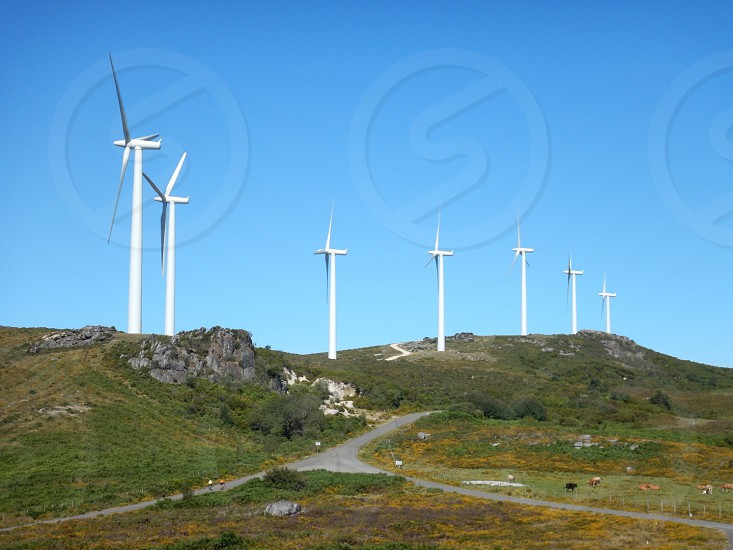 Eolic fans eolic park Field mountains Spain Galicia eco energy green road  photo