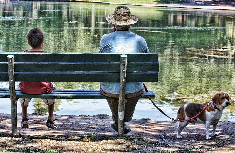 Seen from behind a little boy and his grandfather sit by a lake on a park bench photo
