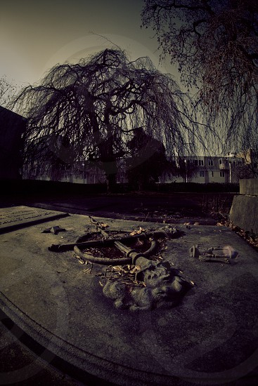 Old graveyard in The Netherlands photo
