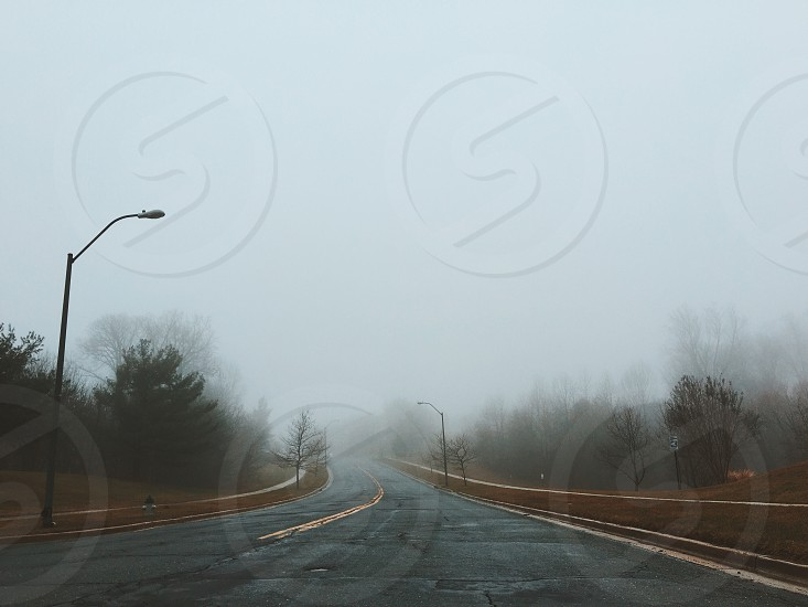 road with fence and trees on the side leading to a misty area during daylight photo