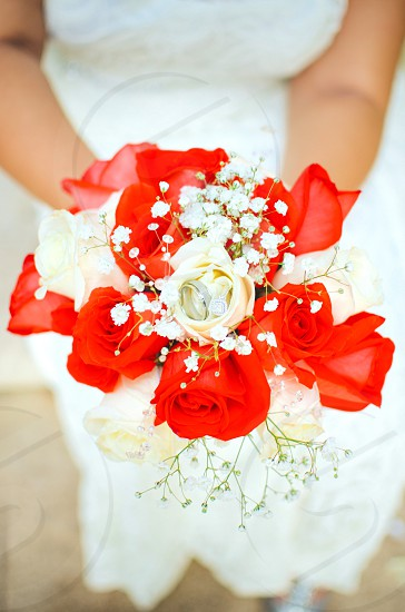 white and red rose flower bouquet on women's hands close-up photography photo