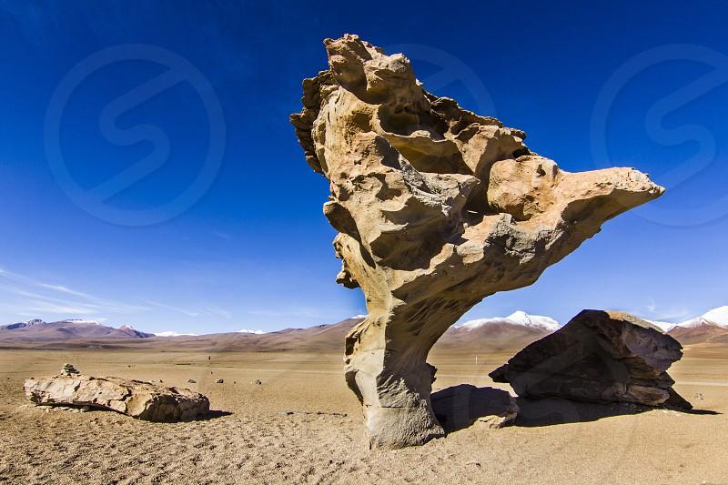 Arbol de Piedra a stone with the form of a tree at Siloli Desert on the way to Salar de Uyuni Bolivia South America  photo