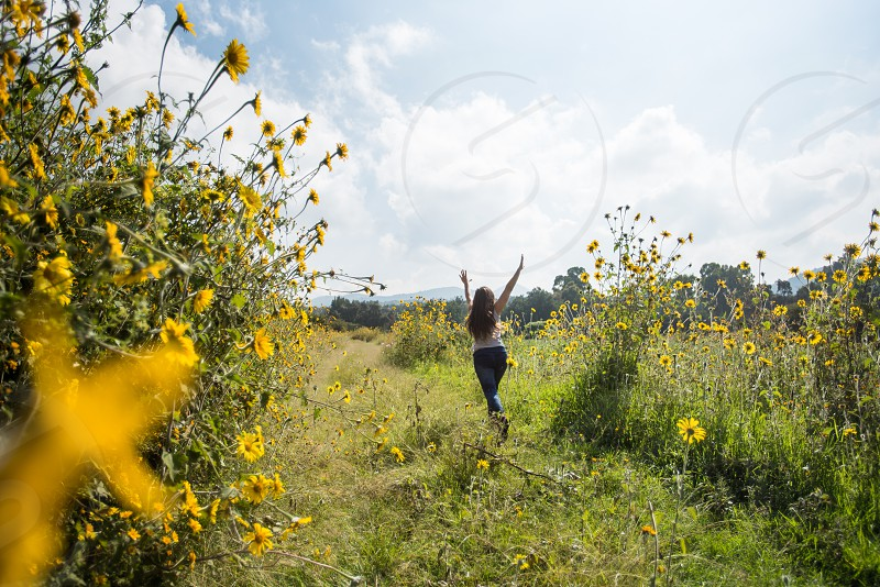 Young woman walking around sunflowers in the early morning photo