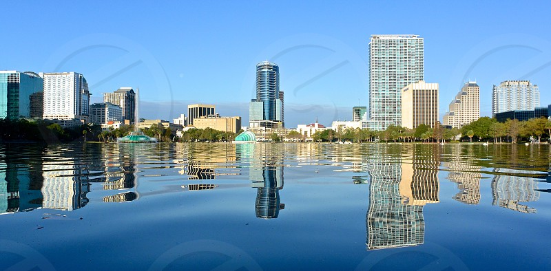 high rise building and tree reflection on body of water under blue calm sky during daytime photo