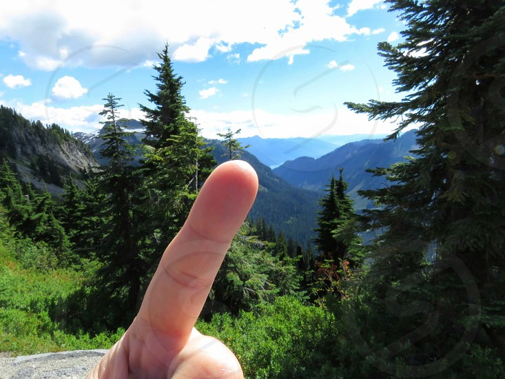 mountains hand gesture pointer point trees forest summer the Rockies explore adventure photo
