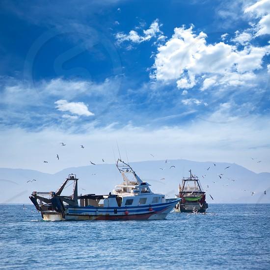 Trawler boats with seagulls in Ibiza Formentera islands photo