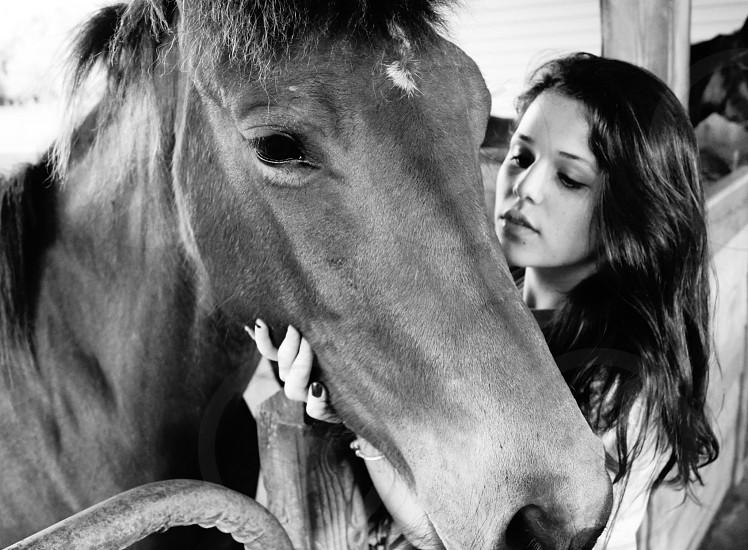 woman touching horse photo