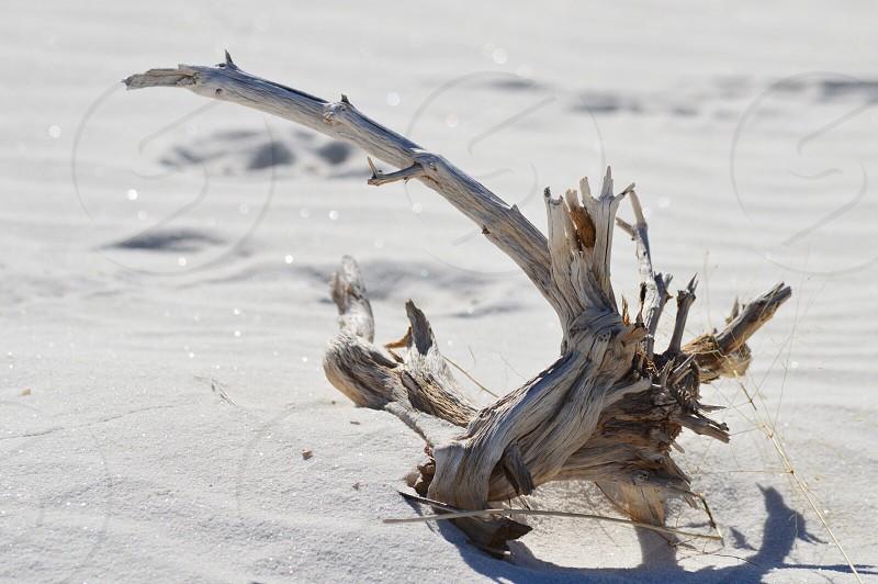 White desert photo