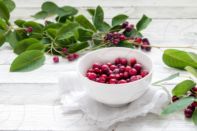 Saskatoon service berries in a white bowl on white wood with green branches photo