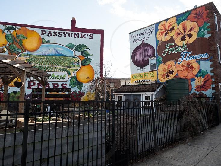 Mural and garden in Passyunk photo
