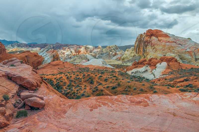 Eroded Red Rock Landscape of Valley of Fire State Park. Nevada. USA  photo