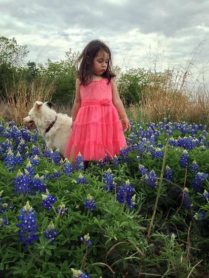 girl in red dress near dog photo