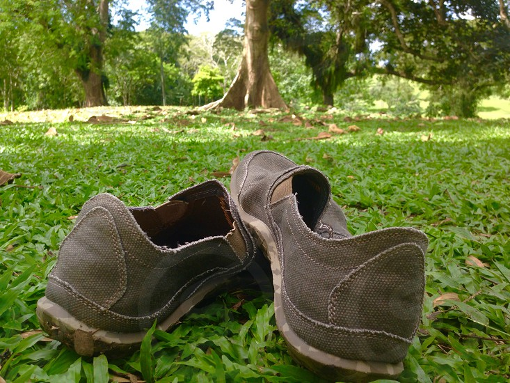 A walk in the park #park #nature #shoes photo