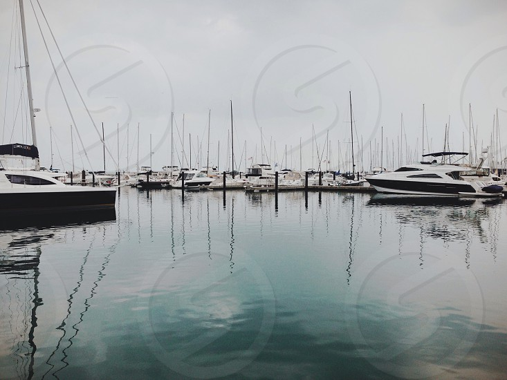 group of yachts on harbor photo