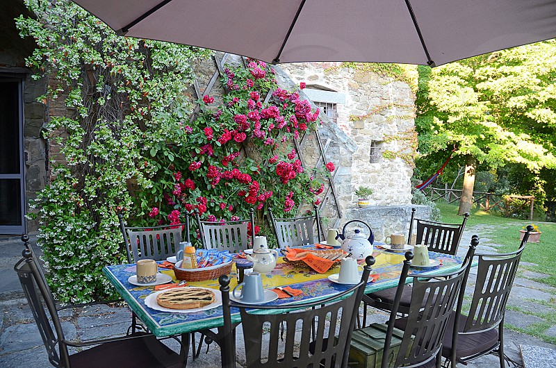 outdoor table with breakfast and red roses behind photo