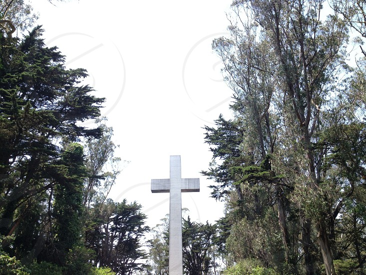 The hidden monument of Mt. Davidson. photo