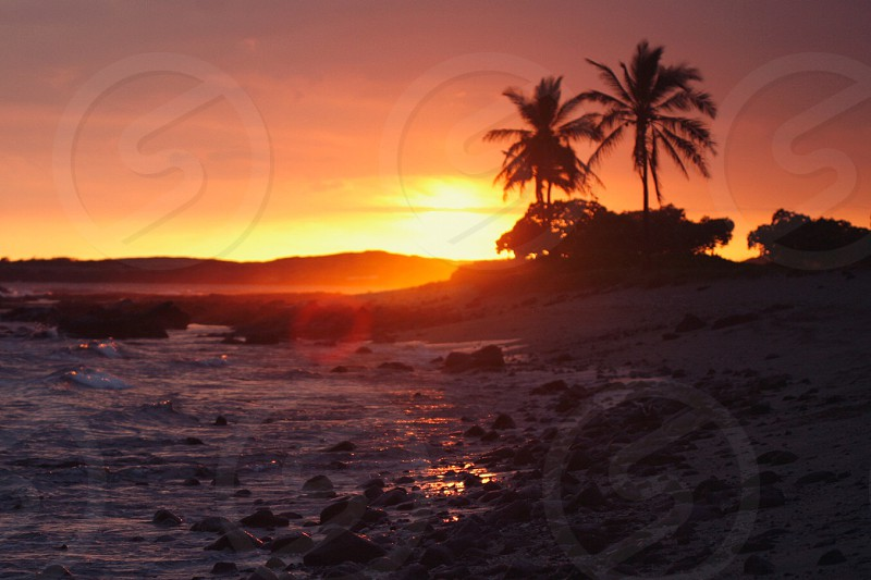 Hawaii sunset beach ocean coast lens flare dusk tropical vacation peace peaceful breathe nature photo