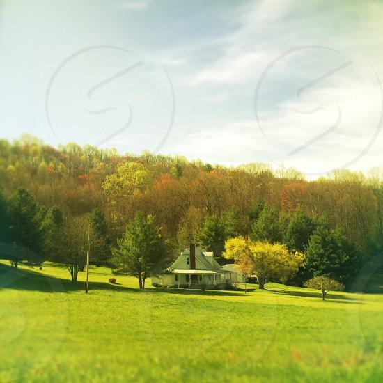 rural road trip photo