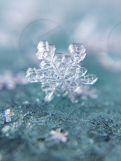 clear snowflakes photo photo