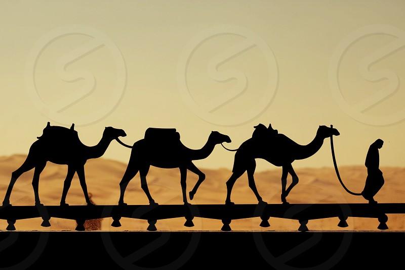 Liwa Desert photo