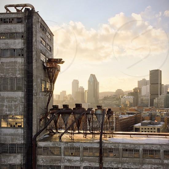 Goldenhour sunlight on montreal cityscape photo