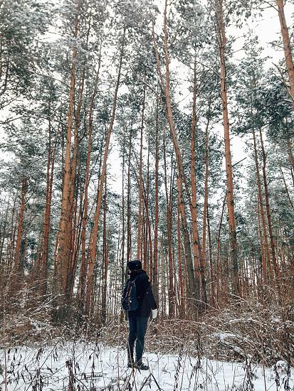 Man looking at snowy wood photo