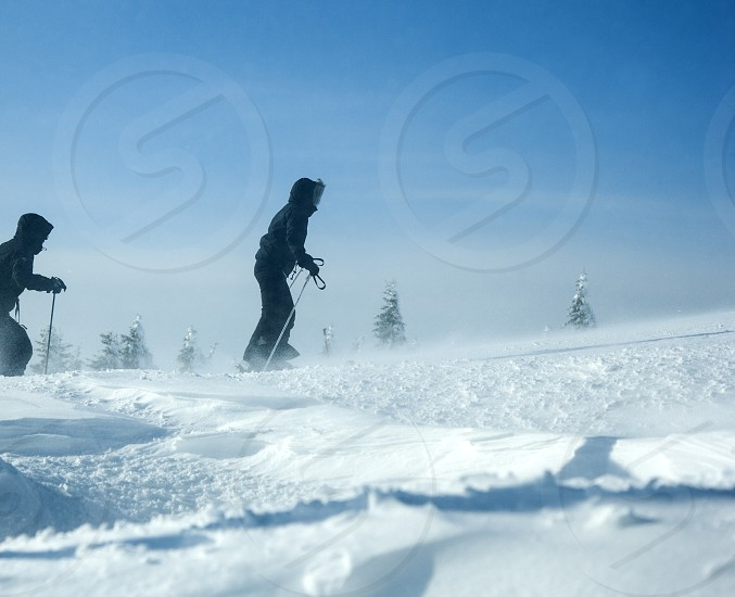 Skiers in winter bright blue  photo