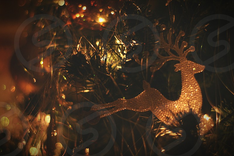 selective focus photo of a deer ornament on green Christmas tree photo