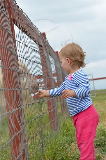 Childhood farm lifestyle  photo