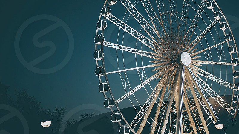 ferries wheel whit near trees during night time photo