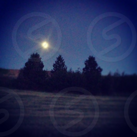 Dreamy night view on the Palouse photo