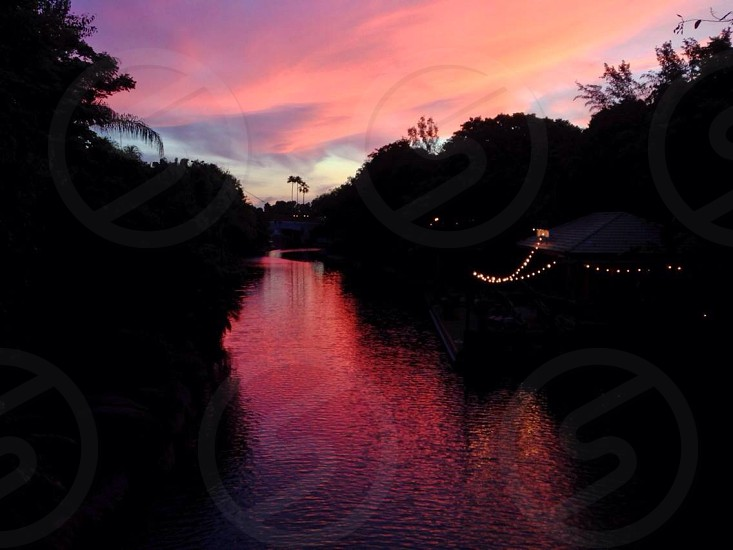 Disney World Sunset.  This sunset picture taken is taken from one of the bridges in Walt Disney World's Animal Kingdom.  photo