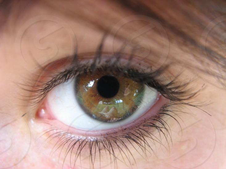 eye // eyelashes // hazel eye photo