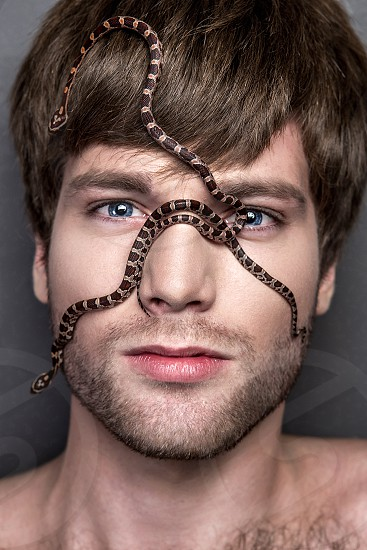 Portrait of a Young Handsome Man with Big Spider on His Face photo