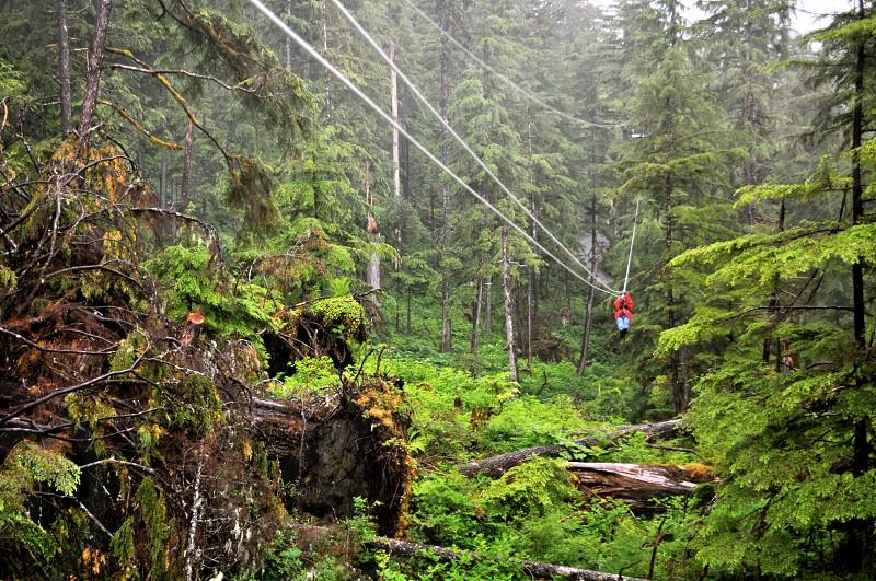 Riding the zipline in Ketchikan Alaska photo