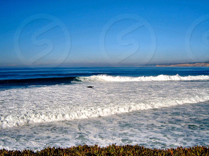 San Diego Coast photo