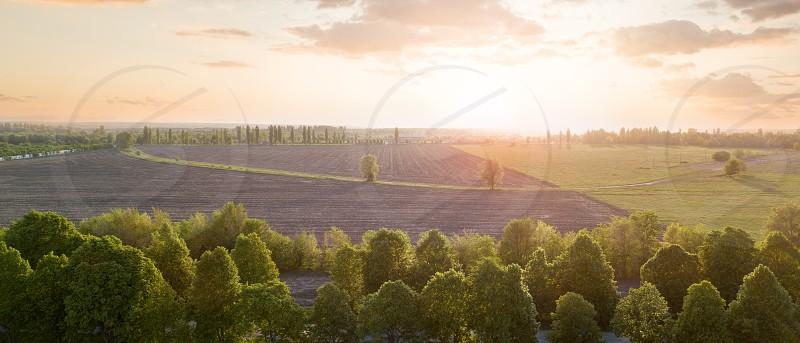 Panorama of a field with a rural road and forest against the sky at sunset. Photo from the drone photo