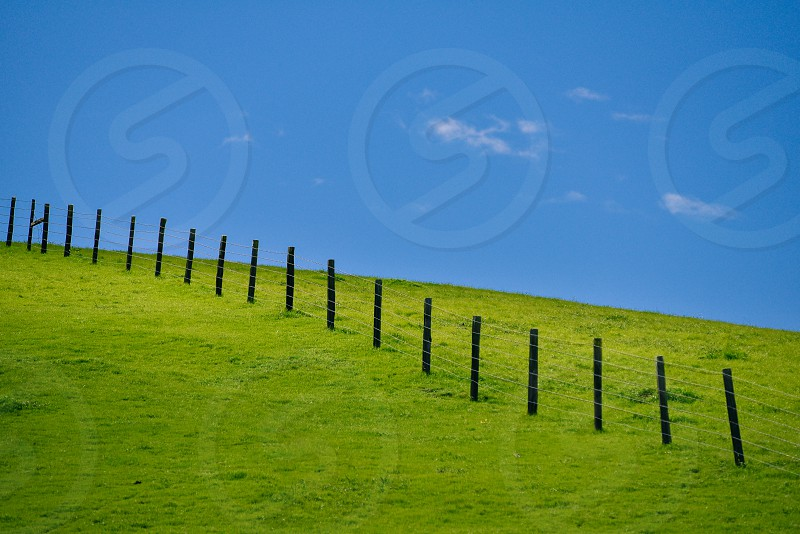 grass sky green fence hill  photo